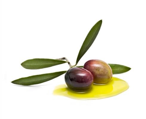 Propiedades aceote de oliva