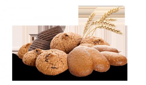 Galletas con trigo